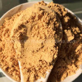 Nespolo secchi Goji Berry Powder