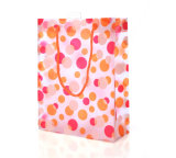 Saco plástico impresso personalizado do presente (saco do PVC)