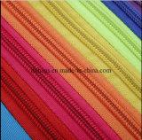 Rainbow di nylon dello Zaino della cartella di corsa dello zaino del sacchetto di banco della spalla della ragazza delle donne