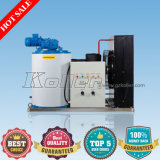 1000kg Flake Ice Machine mit Salt Water Pump Made in Guangzhou
