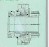 Selo mecânico de execução sob medida com balanço (HT1)