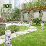 Utilisation solaire de lampe de lumière/mur de jardin de DEL pour la villa