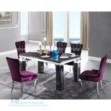 Hotel elegante da HOME do metal da tampa de tela que janta Chair (HW-YH95C)