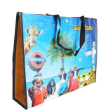 Sacs d'emballage mignons promotionnels réutilisables personnalisés (LJ-100)