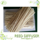Color naturale Water Reed per Diffuser
