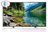 C.C solaire 12V DEL TV de 19 pouces avec la faible puissance