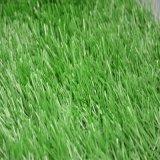 Het kunstmatige Synthetische Gras van het Gebied van het Voetbal van het Gras (SE)