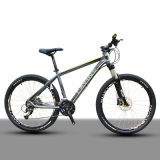 '' Fahrrad 26 mit Lockable Suspension Fork