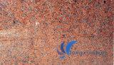 Mattonelle di pietra rosse personalizzate naturali dell'acero G562
