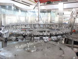 Chaîne de production de jus de fruits de bouteille d'animal familier/ligne remplissante
