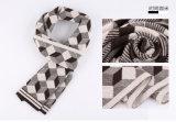 人の方法ウールのナイロンアクリルの編まれた冬の暖かいスカーフ(YKY4603)