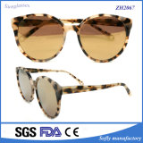 Óculos de sol de acetato de tartaruga de novidade de designer de alta qualidade