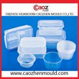 A injeção plástica retangular/selou o molde do recipiente de alimento
