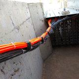 채널 자동 통제를 가진 UV 물 살균제 시스템을 여십시오