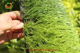 SGSの証明の5人用のフットボールの人工的な草
