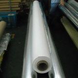 PVC環境のフィルム(HL10-02)