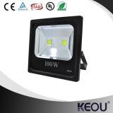 projector do diodo emissor de luz de 10W 20W 30W 50W 100W 150W com corpo de Balck