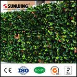 Seto artificial verde respetuoso del medio ambiente de la estera del boj de la decoración casera con Ce