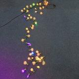 10개의 색깔 LED 훈장을%s 별 전구 점화