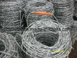 Un filo galvanizzato dei due fili