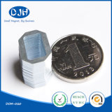 ネオジムのNdFeBの小型の焼結させた常置磁気物質的な磁石