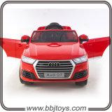 2016 de Nieuwe Aankomst Vergunning gegeven Rit van Jonge geitjes Audi op Auto