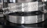 Schweißens-Stutzen-Flansch-Edelstahl 316L