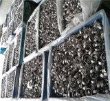 Cnbm tiefes Nut-Kugellager 6800 2RS 6800m Serie Öl-oder Fett