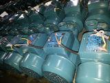 Pompa ad acqua (MKP60-1)