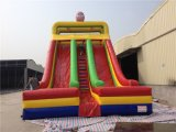 Doppio Spiderman High Dry Slide di Lanes Inflatable per Kids