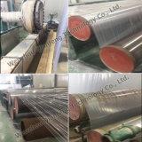 Berufsplastikextruder-Zeile Maschinen-Hersteller
