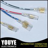 Harnais de câblage automobile électronique élevé de Quanlity
