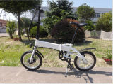 Low Price를 가진 2015 대중적인 Folding Electric Bicycle
