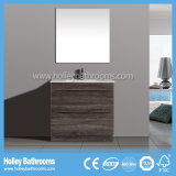 Australia Style Popular Moderne en acier inoxydable Vanity Units (BC111V)