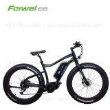 불안정한 모터 바닷가 눈 ATV 전기 자전거 (TDE10Z-3)