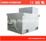 3.3kv a 13.8kv High Voltage Alternator Generator per Power Plant Project