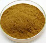 무료 샘플 중대한 Celandine 나물 추출 10:1