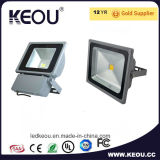 Guangzhou-Lieferant Bridgelux LED Flut-Licht 20With30With50With100W