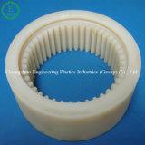 Attrezzo di nylon del nylon dell'olio dell'attrezzo Nylon6 PA66 di Mc di fabbricazione professionale