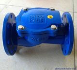 Epoxy CoatingのPn16 BS5153 Ductile Iron Swing Check Valve