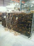 높은 Polished Black Marble Black 및 Gold Marble