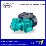 0.5HP zelf-Priming Peripheral Water Pump (QB60)