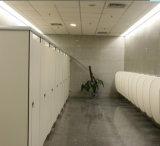 Disegno usato laminato compatto del banco dei divisorii della stanza da bagno