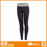 Sport delle donne che eseguono i pantaloni asciutti rapidi Spandex/del poliestere