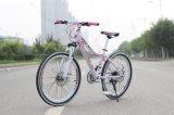 De hete Fiets van de Weg van de Fiets van de Stad van de Verkoop Goedkope Dame Bicycles