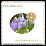 4:1 de poudre d'extrait de fond de fleur de ballon/extrait de Platycodon Grandiflorum