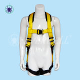 가득 차있는 Body Harness, Safety Harness, Seat Belt, Safety Belt, Two-Point Fixed Mode와 EVA Protection Pad (EW0300H)와 가진 Webbing