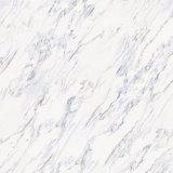 Mattonelle di pavimento lustrate marmo di Carrara & mattonelle della pietra per la decorazione domestica (600*600mm&800*800mm)