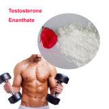 근육 건물을%s 테스토스테론 Propionate CAS 57-85-2