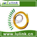 Kern-Faser-Optikzopf Fabrik-Lieferant LC-mm 6